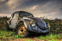Dr Benz and the lost cars  by Urbex und Alltgliches