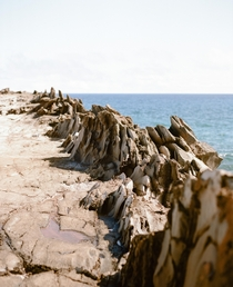Dragons Teeth Maui on film Where lava met wind and waves to create this awesome formation