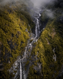 Dramatic lighting in Westland Tai Poutini National Park New Zealand  IG - adamweist