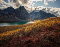 Dream-like conditions during autumn in the Yukon Canada