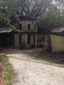Driveway of abandoned Frank Lloyd Wright house in Florida