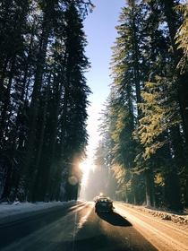Driving over the Mt Hood pass in good ol Oregon in mid December Gotta love living in the PNW x