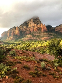 Drove  miles alone across the US and this is the view that sticks with me Golden hour in Sedona Arizona