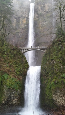 Drove to Portland last weekend specifically to go see Multnomah Falls - Oregon WA