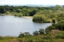 Duddingston Loch Edinburgh