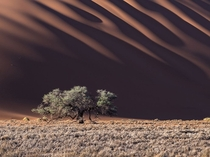 Dunes on Namib Desert photograph by Stas Bartnikas