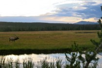 Dusk at Yellowstone