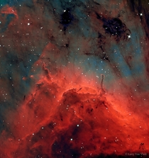 Dust pillars and jets from young stars in the Pelican Nebula visible near the constellation Cyngus