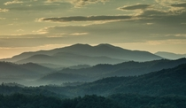 Early morning in The Great Smoky Mountains Tennessee