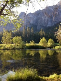 Early morning in Yosemite Valley