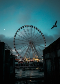 Early Morning Seattle Washington Sunrise Capturing The Seattle Great Wheel and Getting Very Lucky With a Bird in Frame