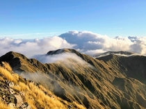 Early morning up high in New Zealands Tararua Range