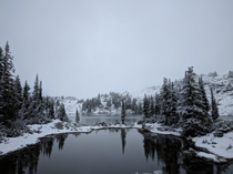 Early season snow in the British Columbia backcountry   x