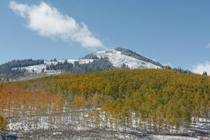 Early season snow near Steamboat Springs CO