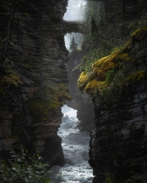 Easily my favorite shot from my trip to Canada last summer Taken at Athabasca Falls