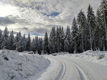 East of Eugene Oregon I found equal portions of snow and silence  x