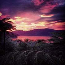 Easter sunrise in Marlborough Sounds New Zealand  xpost from rnewzealand
