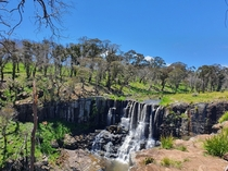 Ebor Falls NSW Australia really loving how life is fighting its way back after the Bush fires x