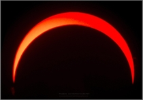 Eclipsed Sun with Prominences