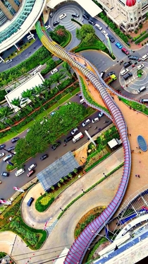 Eco Skywalk between Neo SOHO Tower and APL Tower Western Jakarta From above it looks like a giant snake skin