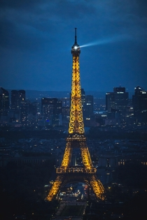 Eiffel Tower during blue hour