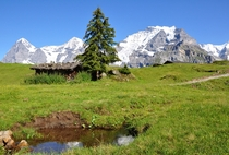 Eiger Mnch and Jungfrau mountains in Switzerland