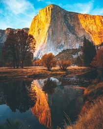 El Capitan in Yosemite with the golden glow of sunset