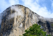 El Capitan Yosemite National Park California   Instagram rwwilkinson