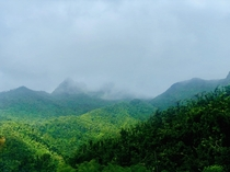 El Yuenque National Rainforest Americas only national rainforest Located in Puerto Rico