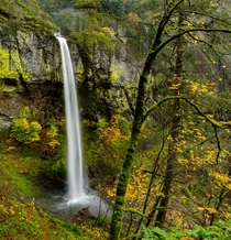 Elowah Falls Oregon on a rainy day