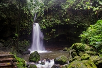 Emerald pool Dominica OC