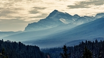 Emerging Mountain across a forest of layers  Morants Curve Alberta   X   OC pawel_migdal_