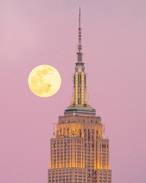 Empire State building x