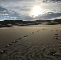 Endless Sun and Sand Colorado USA