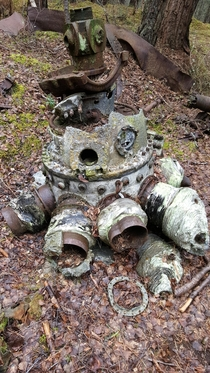 Engine from a Vickers Warwick which crashed in Moray Scotland just after WWII killing both the young pilot and his trainer