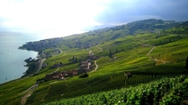 Epesse village in Lavaux Wineyards Switzerland