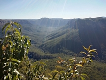 Evans Lookout Blue Mountains National Park NSW Australia