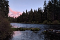 Evening on the Metolius River