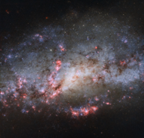 Extreme detail of a starburst region in spiral galaxy NGC  Intense tidal forces from interacting with its neighbor NGC  have caused bursts of star formation Located the constellation Canes Venatici at a distance of  million light-years from Earth image cr
