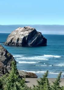 Face Rock in Brandon Oregon  x