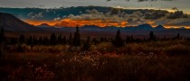 Fading light - Denali National Park Alaska
