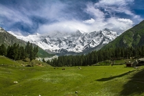 Fairy Meadows Gilgit-Baltistan with the Nanga Parbat  m towering in the background  by Mudabbir Maajid