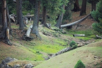 Fairy meadows Pakistan  lost the hi res file
