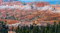 Fairyland Loop trail China Wall - Bryce Canyon  OC Simon Linder