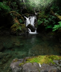Fairytale Falls Vancouver Island OC  daylincooper