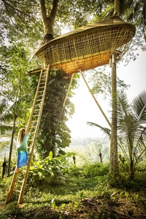 Fairytalelike Treehouse in Ubud