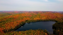 Fall afternoon in Algonquin Provincial Park Ontario