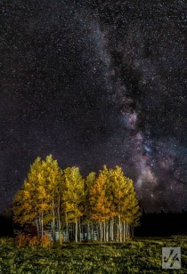 Fall Aspens In The Eye Of The Milkyway