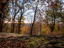 Fall at Whipps Ledges in Hinckley Ohio