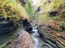 Fall colors along the Gorge Trail at Watkins Glen State Park